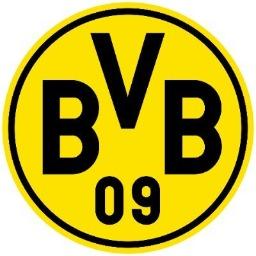 BVB09